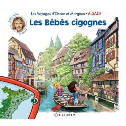 Alsace les bébés cigognes